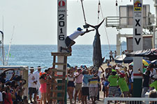The year 2017 marks the 46th edition of Cozumel's biggest fishing fiesta!