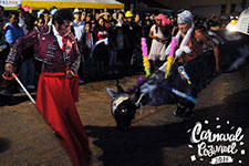 Cozumel Carnival A 143-Year Tradition Of Fun And Fantasy