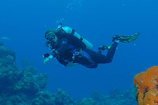 Scuba Diving - Water Sports Adventures