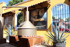 Tequila Tasting Tours